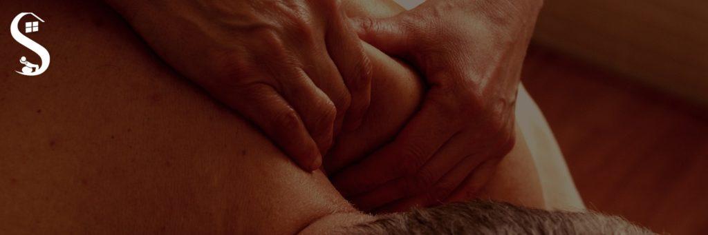 Grande parte das pessoas que procuram cuidado fisioterapêutico por conta da dor. Poucos compreendem que se não fosse a analgesia, pouco existiria dos serviços de saúde.
